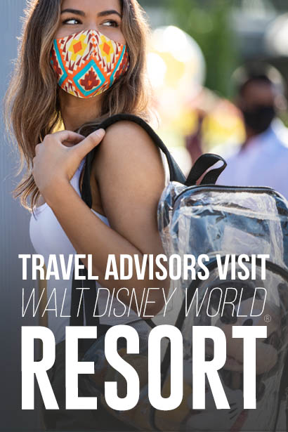 TRAVEL AGENTS AT <i>WALT DISNEY WORLD</i><sub>®</sub> RESORT